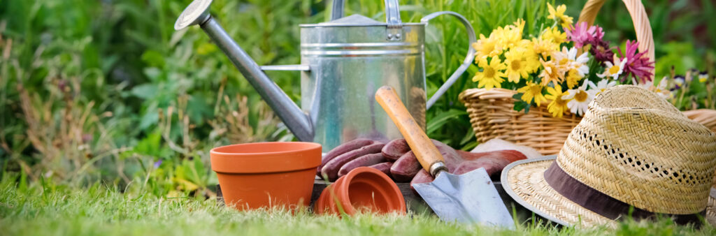 Gardening adds years to your life and life to your years.